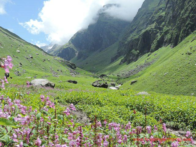 This route would give a complex to the Valley of Flowers