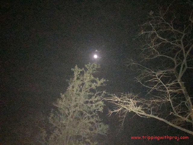The moon still shining bright