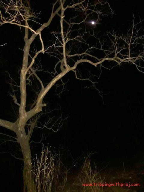 Beautiful view of the moon - Andharban night trek