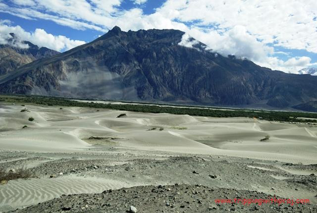 Ladakh Travel Guide - Sand Dunes at Nubra Valley