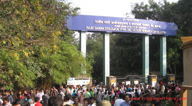 Places to visit in Pune - Rajiv Gandhi Zoological Park