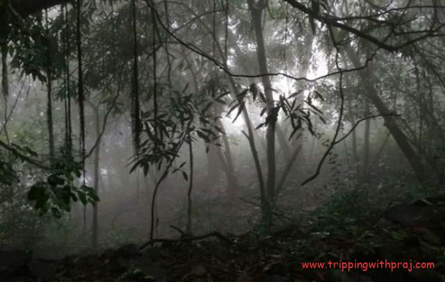 A view of the steep descent ahead towards the last stages of Andharban Night Trek