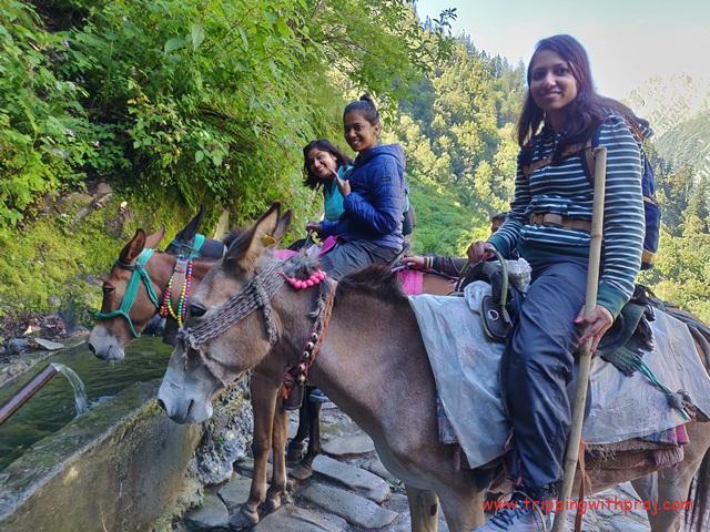 Unforgettable Mule Ride to the Hemkund Sahib Gurdwara