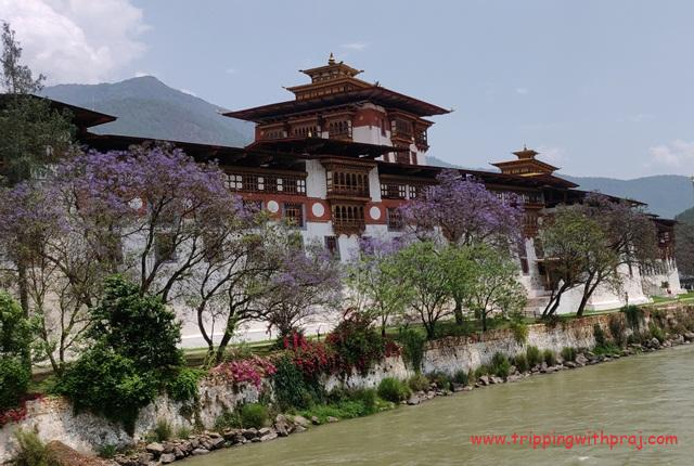 The famous - Punakha Dzong